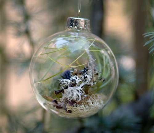 Елочные сады. Идея лесного декора на Новый Год Прозрачные елочные шары Идеи декора на новый год Декор к новому году