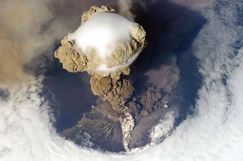 Wikipedia Picture of the Year 2010. Лучшие фотографии википедии